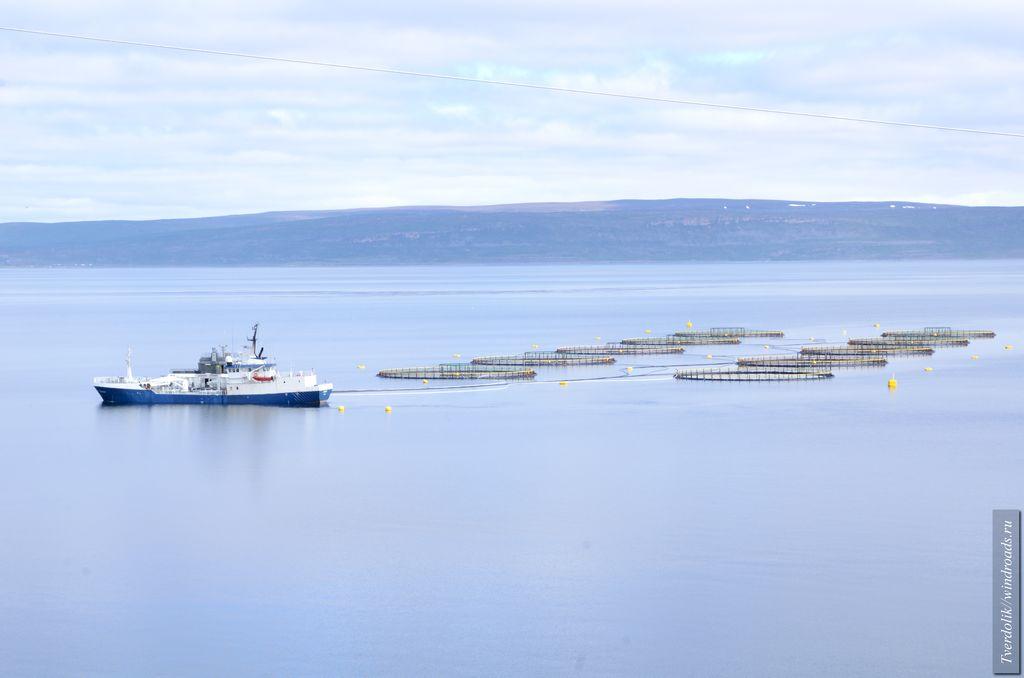Рыбный промысел во фьордах