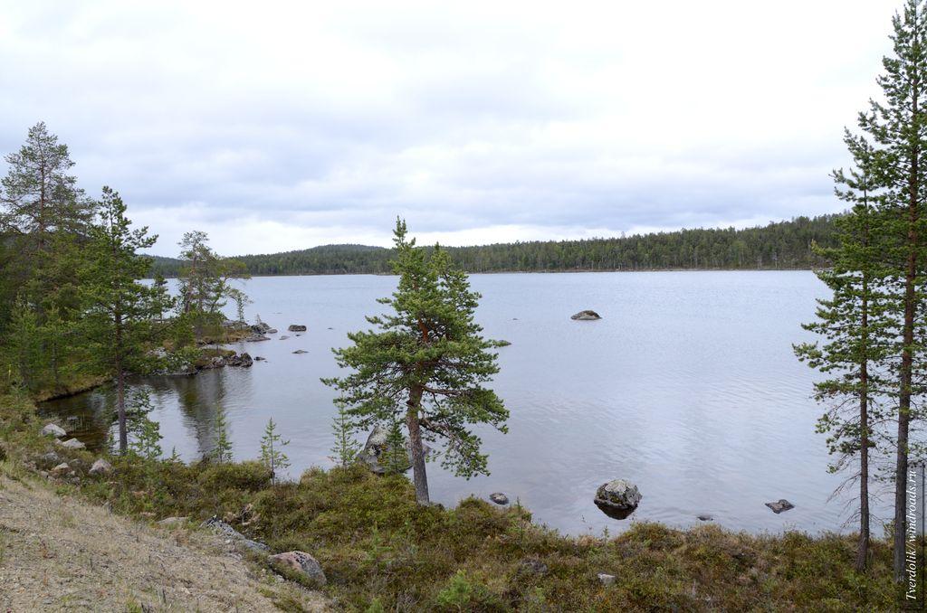 Типичная природа Финляндии